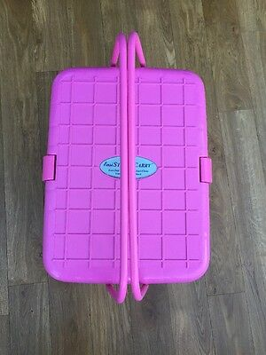 Pink Step And Carry Art Box