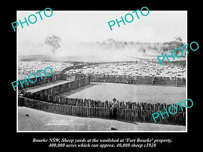 OLD LARGE HISTORICAL PHOTO OF BOURKE NSW, THE FORT BOURKE SHEEP YARDS c1920