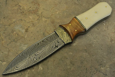 Hand Made Damascus Hunting Dagger with Olive Wood, Bone Handle HD26BO