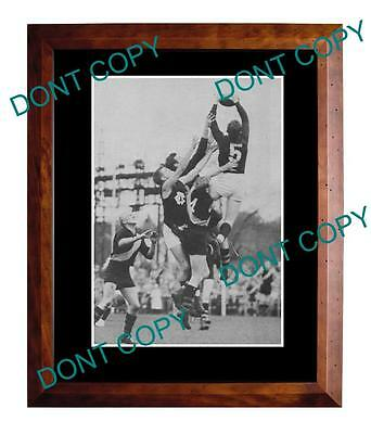 TONY ONGARELLO FITZROY FC 1950s LARGE A3 SPECKY PRINT