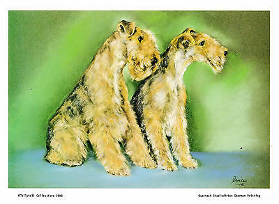 """11"""" X 8"""" SIGNED LIMITED EDITION PRINT of the  LAKELAND TERRIERS   DOG"""