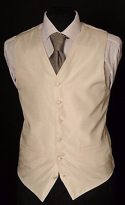 W - 1100.mens And Boys Plain Ivory Dupion Wedding Waistcoat/ Dress/ Formal