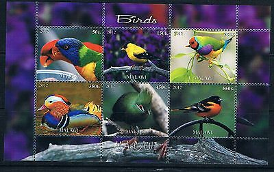Bloc Sheet Oiseau Bird Neuf MNH ** Malawi 2012 Private local/issue