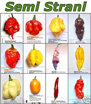 120 Seeds HOT CHILI PEPPERS Coll 1: CAROLINA REAPER, PINK TIGER, PRIMO YELLOW et