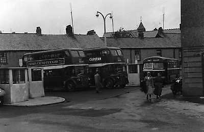 Photograph BUS PICTURE Ribble.