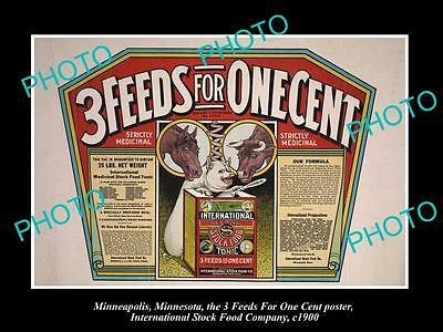 OLD LARGE PHOTO OF MINNEAPOLIS STOCK Co POSTER, HORSE PIG CATTLE FOOD 3in1 c1900