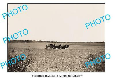 OLD LARGE PHOTO SUNSHINE HARVESTER IN ACTION c1920 NSW3