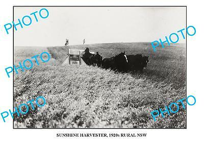 OLD LARGE PHOTO SUNSHINE HARVESTER IN ACTION c1920 NSW4