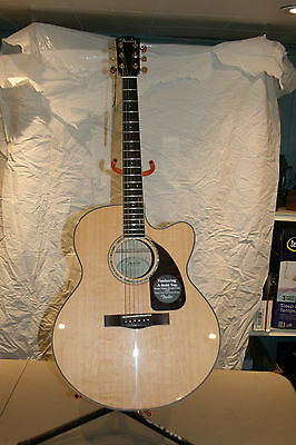 Fender CJ-290SCE Jumbo Maple Acoustic-Electric Guitar with Case - Natural NEW!!