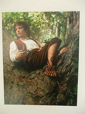 Lord Of The Rings Frodo, Elijah Wood hand signed 10x8 photo