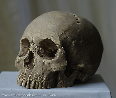 HUMAN SKULL REPLICA realistic, full size, hand made from plaster of Paris