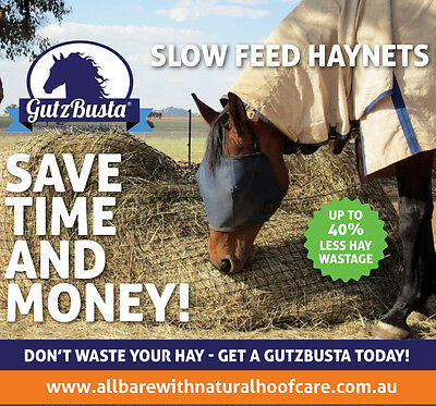Round Bale Slow Feed Hay Net - GutzBusta® EASY FIT  6x4 + FREE REPAIR KIT