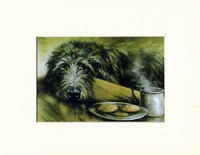 """8"""" X 10"""" MOUNTED  OIL PAINTING PRINT of the IRISH WOLFHOUND  DOG"""