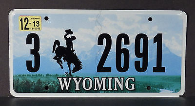 2013 Wyoming Bucking Horse License Plate #3 2691
