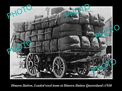 OLD LARGE HISTORIC PHOTO OF DIMORA STATION QLD, WAGON LOADED WITH WOOL c1920
