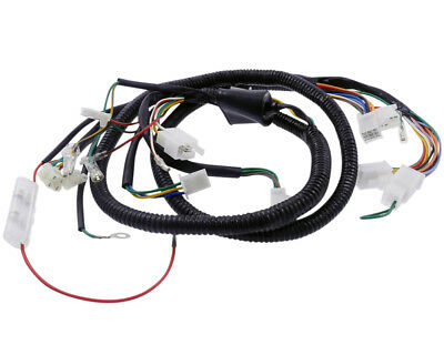Main harness for REX RS900 type: QM50T-10A (Qingqi)