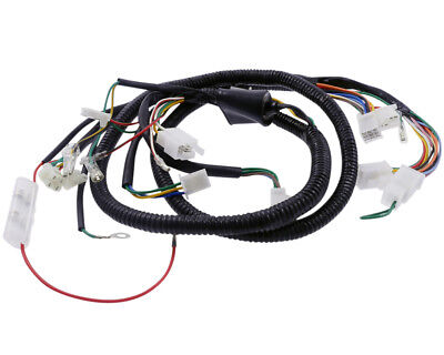 Main harness for ZNEN Vpa 50 ZN50QT-30A