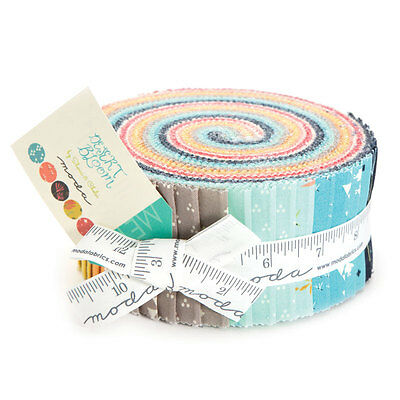 Quilting Fabric Jelly Roll - Moda - Desert Blooms