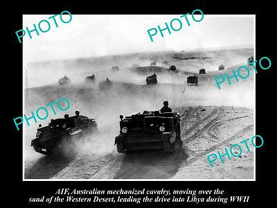 Old Large Historical Photo Of Aif Anzacs, The Mechanized Cavalry In Libya Wwii