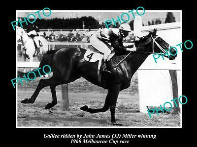 Old Large Horse Racing Photo Of Galilee Winning The 1966 Melbourne Cup