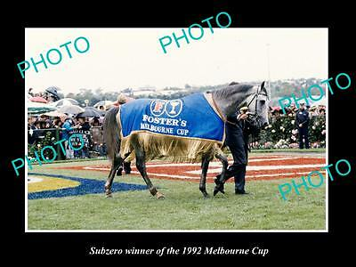Large Historic Horse Racing Photo Of Subzero, 1992 Melbourne Cup Winner