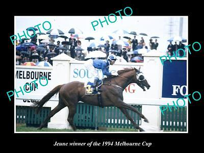 Large Historic Horse Racing Photo Of Jeune, 1994 Melbourne Cup Winner 1