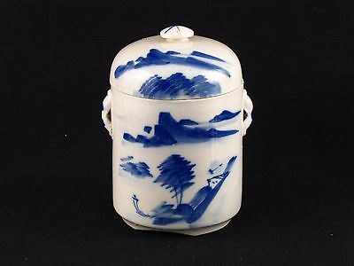 Vintage Chinese Blue and White Lidded Ginger Jar With Water Scene