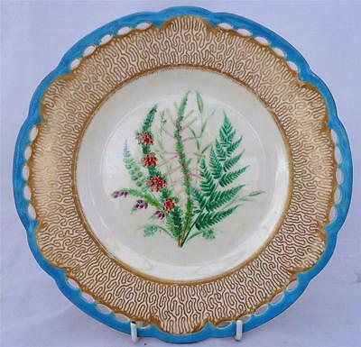 Antique Victorian Worcester Porcelain Pierced Hand Painted Botanical Plate 1860
