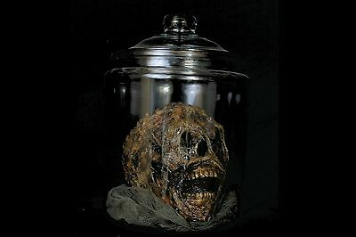Life Size Severed Human Skull In A Jar - The Walking Dead Corpsed Halloween Prop