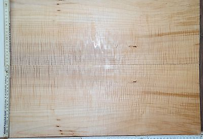 Tonewood Ahorn/ Maple 18125 Top Set Tonholz Luthier Guitar Builder curly Figured