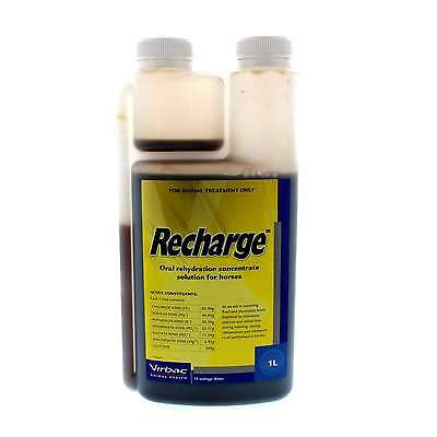 Recharge Oral Rehydration Concentrate Solution Horse Equine 1L