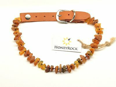 GENUINE BALTIC AMBER Collar Necklace with Leather Strap for Dogs Cats 11-13 in