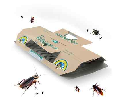 10p Cockroach Roach House Glue Traps Disposable Insect Pest Control Ants Spider