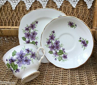 ROYAL VALE BONE CHINA 1960s TRIO CUP SAUCER PLATE SET SWEET VIOLETS 8141 GILDED