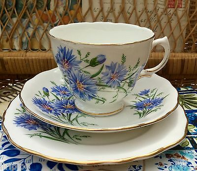 ROYAL VALE BONE CHINA 1950s TRIO CUP SAUCER PLATE 7513 BLUE CORNFLOWER