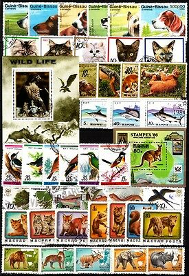 483 WORLD 1980s. Fauna Collection. Birds Dogs Cats Fish...9 Complete issues, CTO