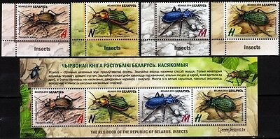 FAUNA: Insects / Beetles. Set and S/sheet. LL CORNER. BELARUS 2016 (**)