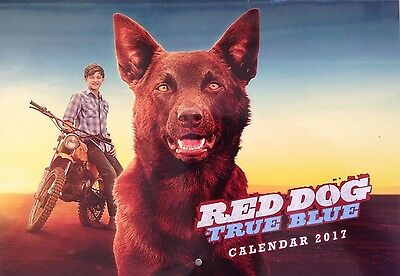 Red Dog True Blue The Movie 2017 A4 Wall Calendar Our Dog Our Story Our Legend