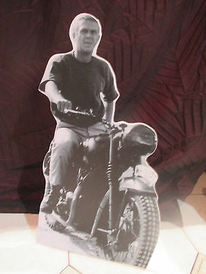 steeve mcqueen  plv hollandaise display stand up
