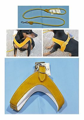 Pettorale Made in Italy in pelle  per cani disponibile in varie misure Richdog