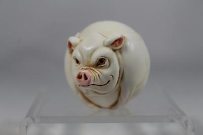 Harmony Kingdom  Roly Polys 'Curly' NEW - Pig #TJRPPI Retired 2002 New In Box