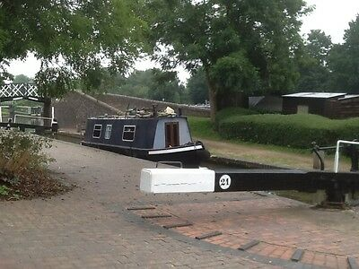 30Ft Traditional Style Narrowboat Vetus M310 Saftey & Licensed