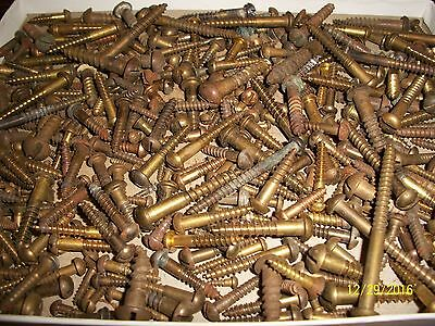 """450+, Old """"brass"""" Slotted Round-Head Wood Screws, Lots Of Different Sizes"""