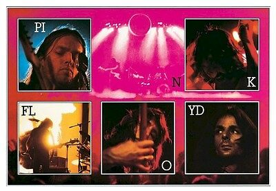 PINK FLOYD ~ LIVE COLLAGE ~ 24x36 MUSIC POSTER NEW/ROLLED! Gilmour Waters