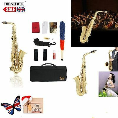 New Professional Eb Alto Sax Saxophone Paint Gold with Case and Accessories AYA