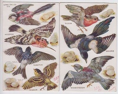 Postcards Tuck's Oilette bird series pair with pop out birds unused & scarce