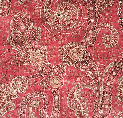 LEE JOFA Paisley printed multi color Cotton Velvet Remnant New