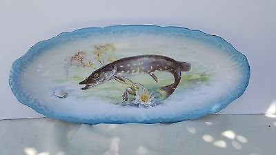Rare Antique Austria 1800's Fish Plate Platter - Imperial Crown China