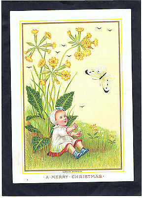 Marcus Ward Victorian Christmas Card Miniature Baby Cowslip Butterfly