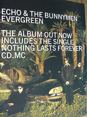 Echo & The Bunnymen - Magazine Cutting (Full Page Advert) (Ref T13)